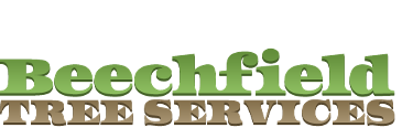 Logo, Beechfield Tree Services - Tree Felling in Leeds, West Yorkshire